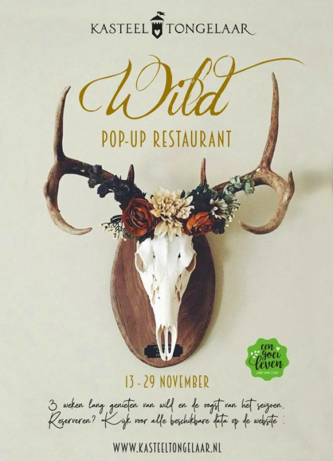 Wild POP-UP restaurant